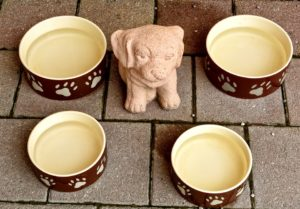 Dog Bowls - Stainless Steel Personalized